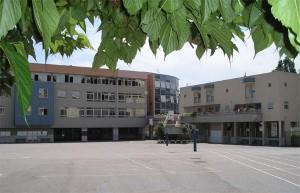 vue_college4